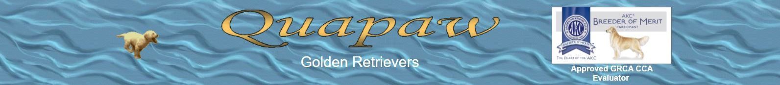 Quapaw Golden Retrievers